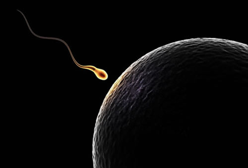 Definition-of-Infertility