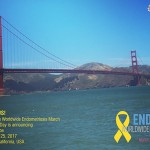 Worldwide Endometriosis March 2017